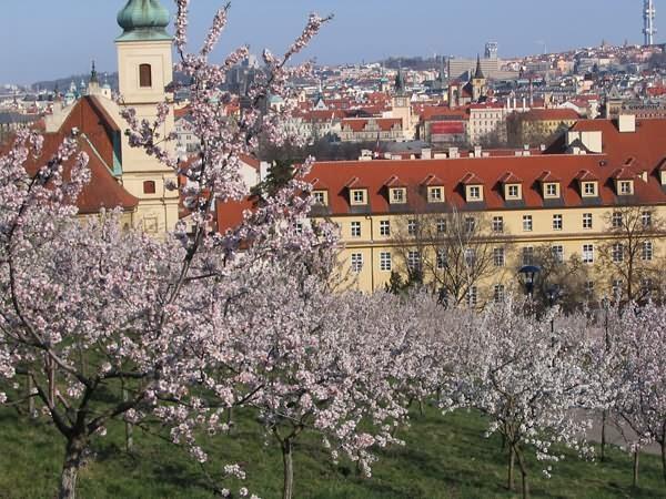 Какое время года откроет туристу неизведанную Прагу?